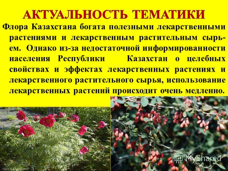 Флора Казахстана богата полезными лекарственными растениями и лекарственным растительным сырь- ем. Однако из-за недостаточной информированности населения Республики Казахстан о целебных свойствах и эффектах лекарственных растениях и лекарственного ра