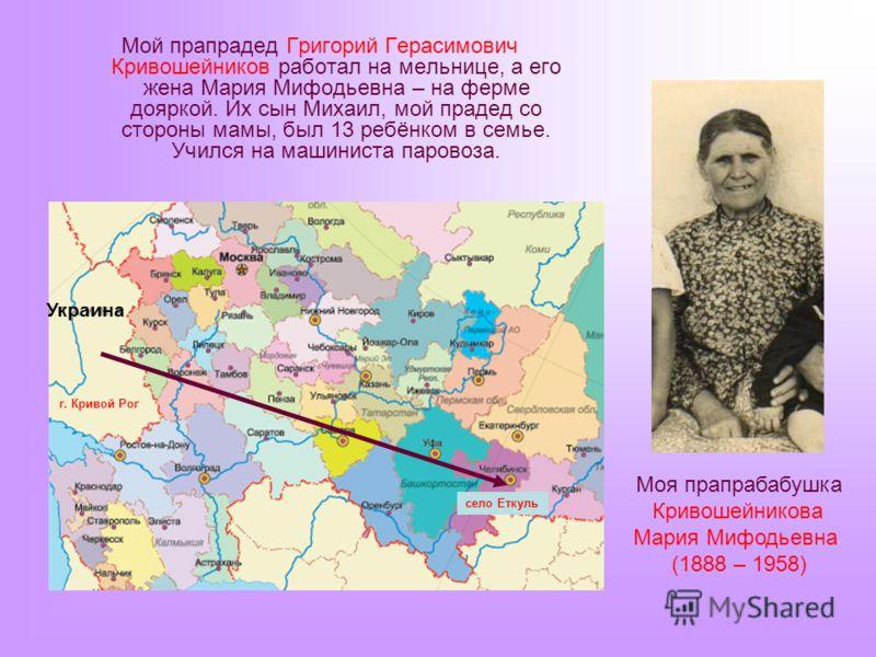 Мой прапрадед Григорий Герасимович Кривошейников работал на мельнице, а его жена Мария Мифодьевна – на ферме дояркой. Их сын Михаил, мой прадед со стороны мамы, был 13 ребёнком в семье. Учился на машиниста паровоза. Украина г. Кривой Рог село Еткуль