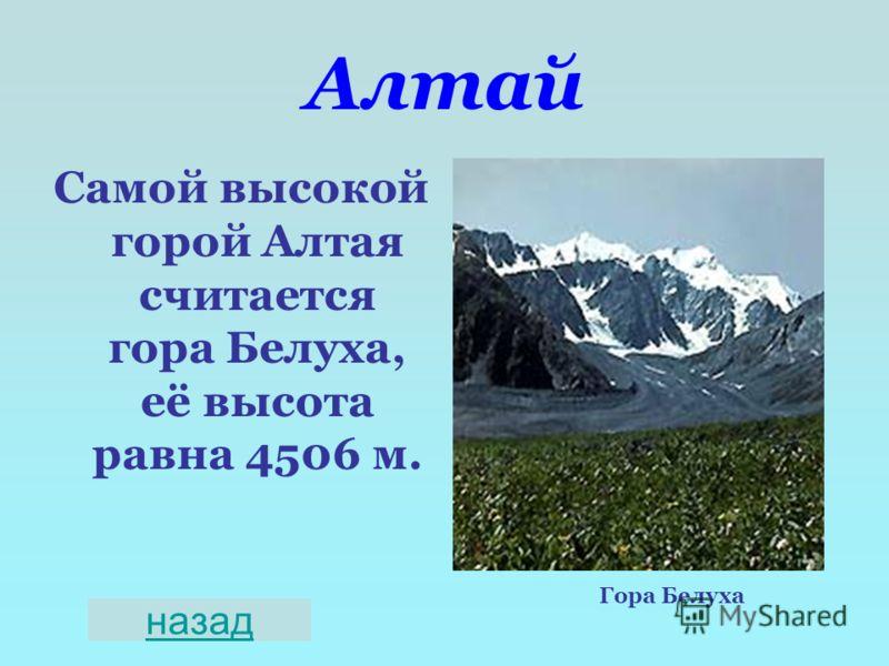 Алтай Самой высокой горой Алтая считается гора Белуха, её высота равна 4506 м. Гора Белуха назад