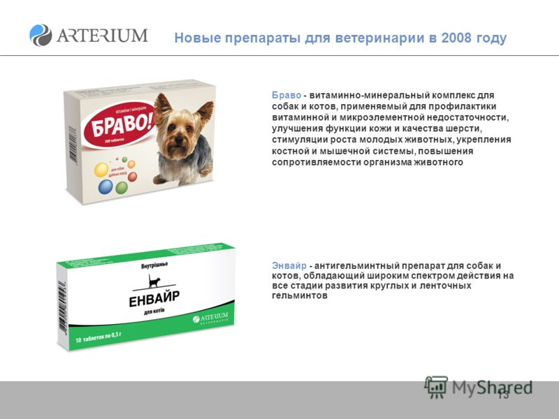 13 Новые препараты для ветеринарии в 2008 году Браво - витаминно-минеральный комплекс для собак и котов, применяемый для профилактики витаминной и микроэлементной недостаточности, улучшения функции кожи и качества шерсти, стимуляции роста молодых жив