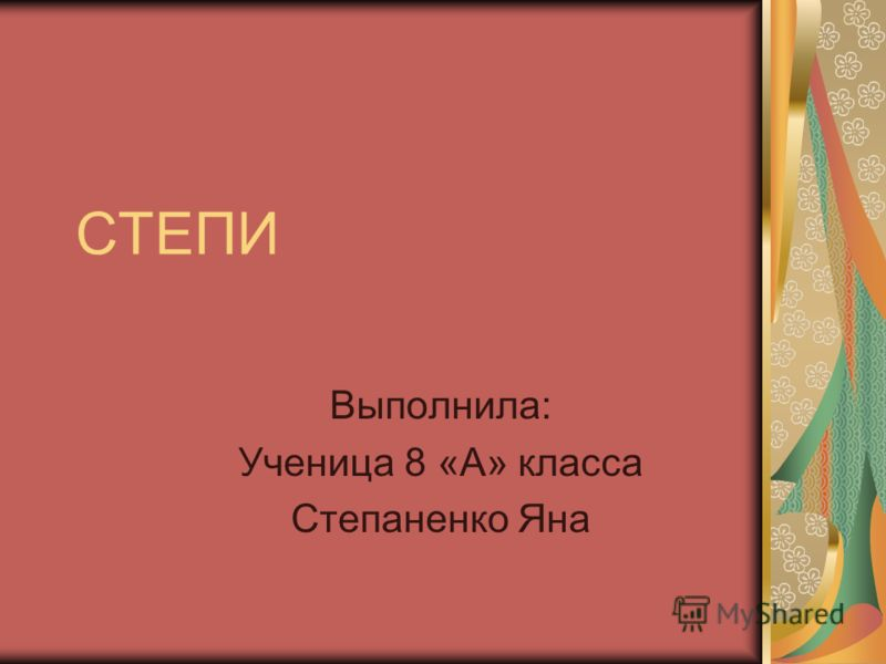 СТЕПИ Выполнила: Ученица 8 «А» класса Степаненко Яна