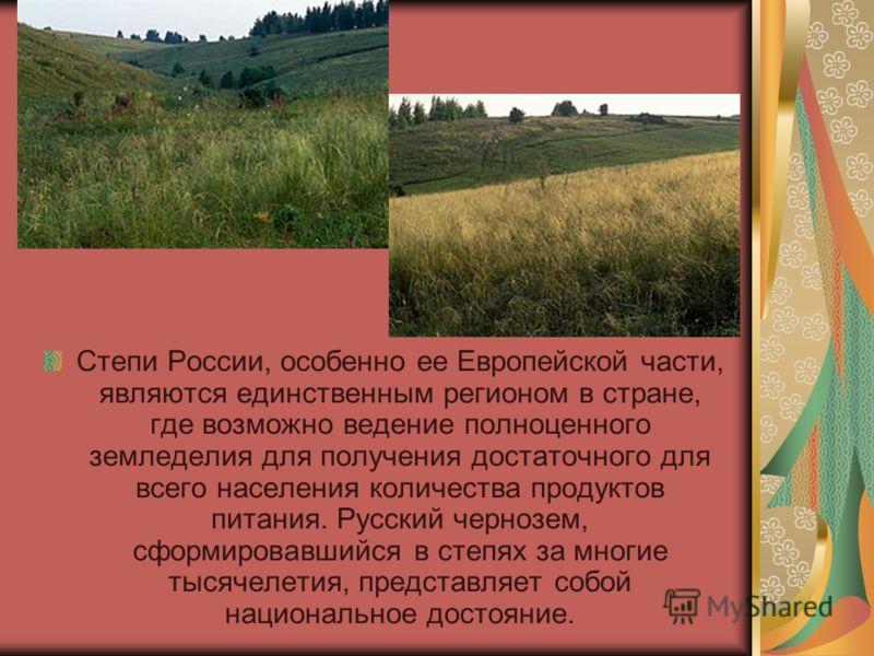 Степи России, особенно ее Европейской части, являются единственным регионом в стране, где возможно ведение полноценного земледелия для получения достаточного для всего населения количества продуктов питания. Русский чернозем, сформировавшийся в степя