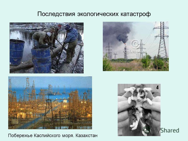 Последствия экологических катастроф Побережье Каспийского моря. Казахстан