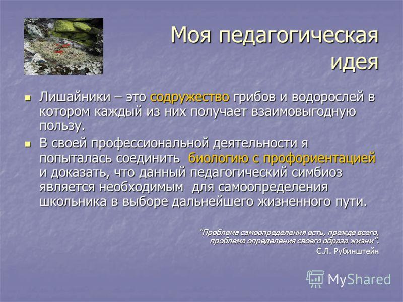 Моя педагогическая идея Лишайники – это содружество грибов и водорослей в котором каждый из них получает взаимовыгодную пользу. Лишайники – это содружество грибов и водорослей в котором каждый из них получает взаимовыгодную пользу. В своей профессион