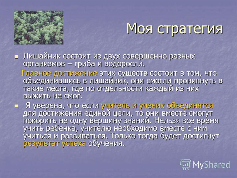 Моя стратегия Лишайник состоит из двух совершенно разных организмов – гриба и водоросли. Лишайник состоит из двух совершенно разных организмов – гриба и водоросли. Главное достижение этих существ состоит в том, что объединившись в лишайник, они смогл