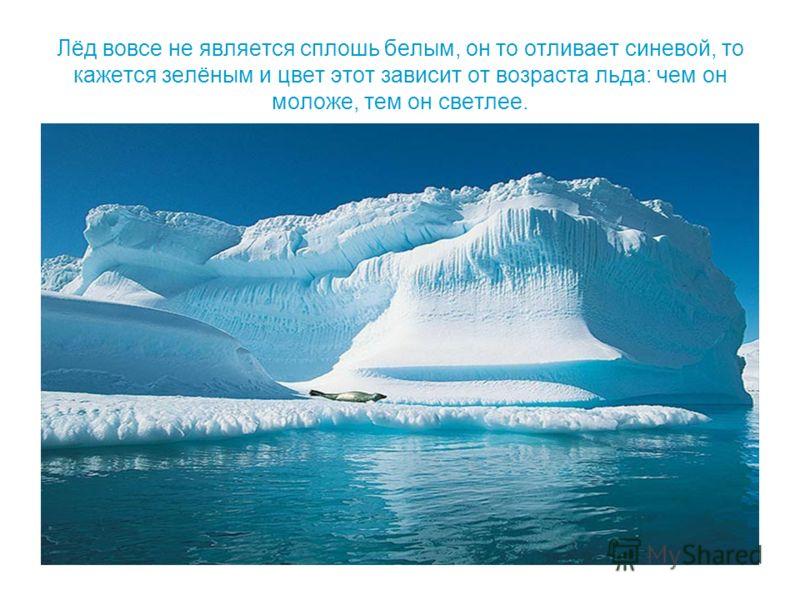 Лёд вовсе не является сплошь белым, он то отливает синевой, то кажется зелёным и цвет этот зависит от возраста льда: чем он моложе, тем он светлее.