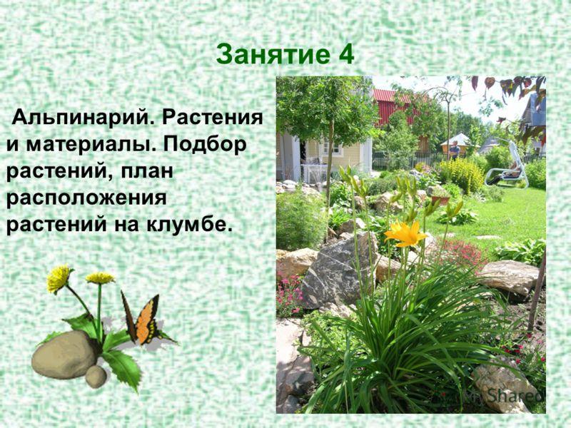 Занятие 4 Альпинарий. Растения и материалы. Подбор растений, план расположения растений на клумбе.