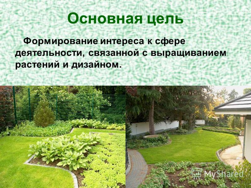 Основная цель Формирование интереса к сфере деятельности, связанной с выращиванием растений и дизайном.