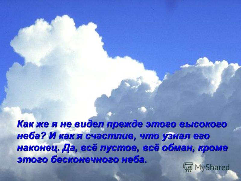 Как же я не видел прежде этого высокого неба? И как я счастлив, что узнал его наконец. Да, всё пустое, всё обман, кроме этого бесконечного неба.