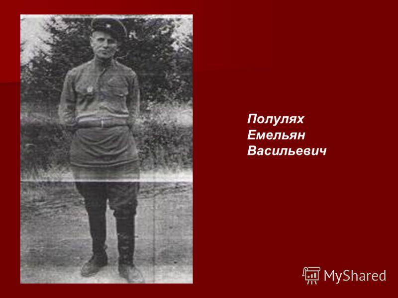 Полулях Емельян Васильевич