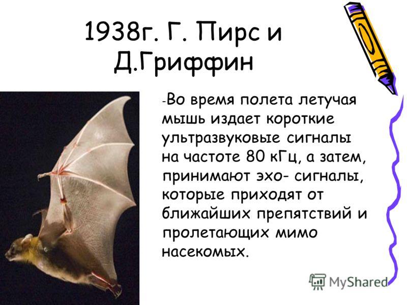 1938г. Г. Пирс и Д.Гриффин - Во время полета летучая мышь издает короткие ультразвуковые сигналы на частоте 80 кГц, а затем, принимают эхо- сигналы, которые приходят от ближайших препятствий и пролетающих мимо насекомых.