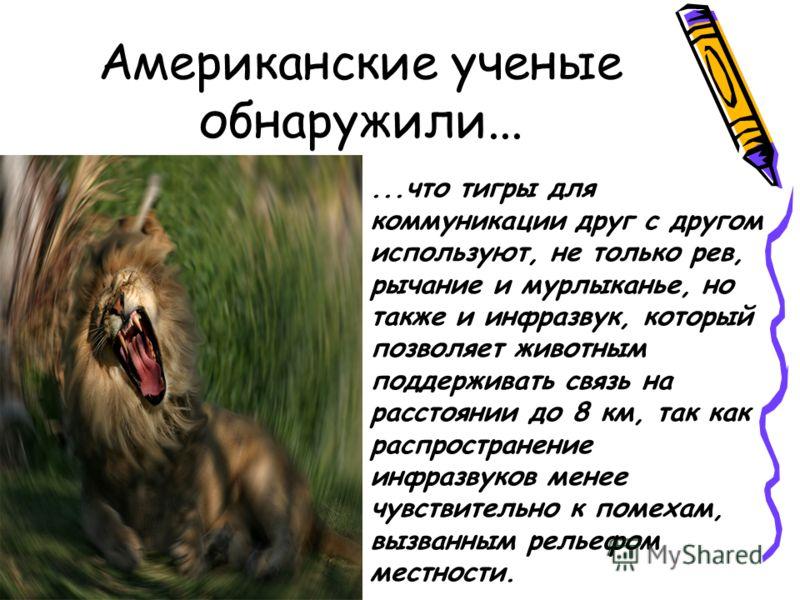 Американские ученые обнаружили......что тигры для коммуникации друг с другом используют, не только рев, рычание и мурлыканье, но также и инфразвук, который позволяет животным поддерживать связь на расстоянии до 8 км, так как распространение инфразвук