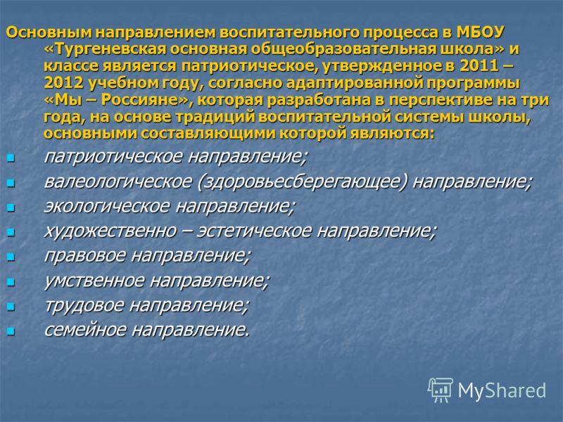 Основным направлением воспитательного процесса в МБОУ «Тургеневская основная общеобразовательная школа» и классе является патриотическое, утвержденное в 2011 – 2012 учебном году, согласно адаптированной программы «Мы – Россияне», которая разработана