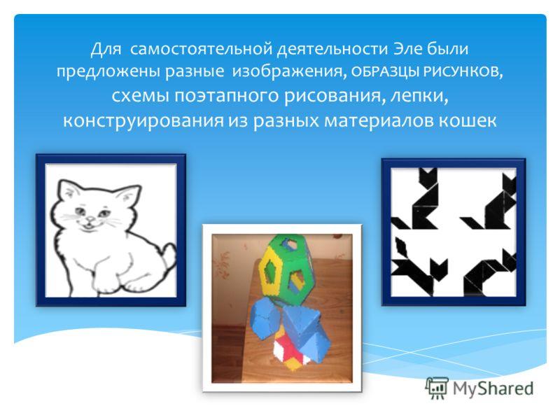 Для самостоятельной деятельности Эле были предложены разные изображения, ОБРАЗЦЫ РИСУНКОВ, схемы поэтапного рисования, лепки, конструирования из разных материалов кошек