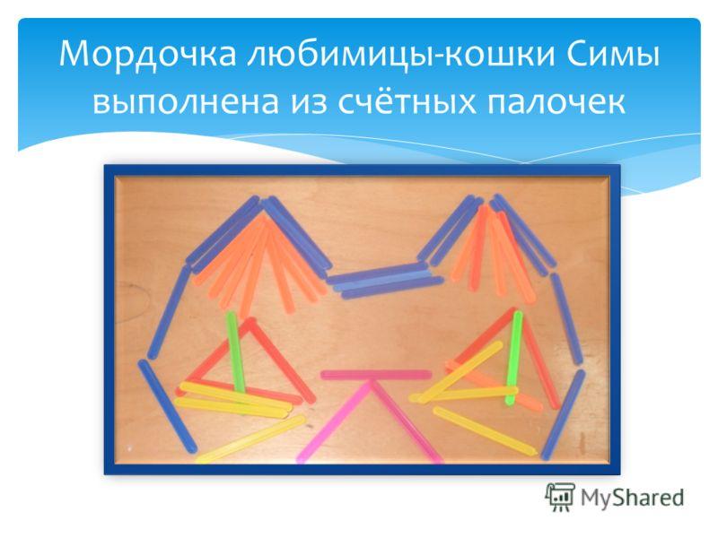 Мордочка любимицы-кошки Симы выполнена из счётных палочек