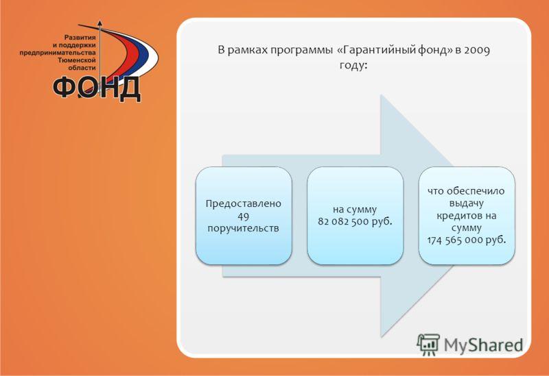 В рамках программы «Гарантийный фонд» в 2009 году: Предоставлено 49 поручительств на сумму 82 082 500 руб. что обеспечило выдачу кредитов на сумму 174 565 000 руб.