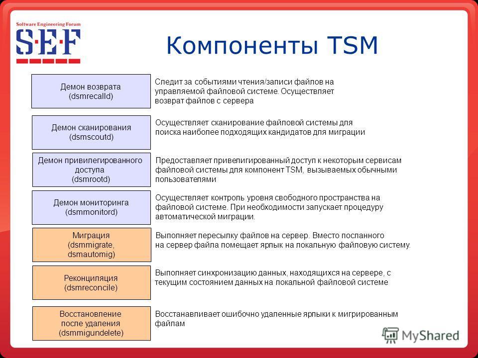 Компоненты TSM Ценность данных/ частота обращений Мес. 69 1 Год 5 Лет 10 Лет Мес. Источник: Enterprise Storage Group Демон сканирования (dsmscoutd) Демон привилегированного доступа (dsmrootd) Демон возврата (dsmrecalld) Реконциляция (dsmreconcile) Ми