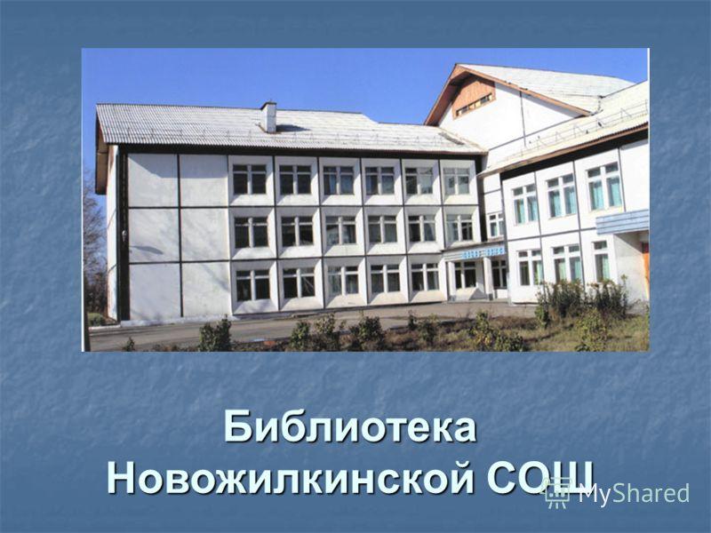 Библиотека Новожилкинской СОШ