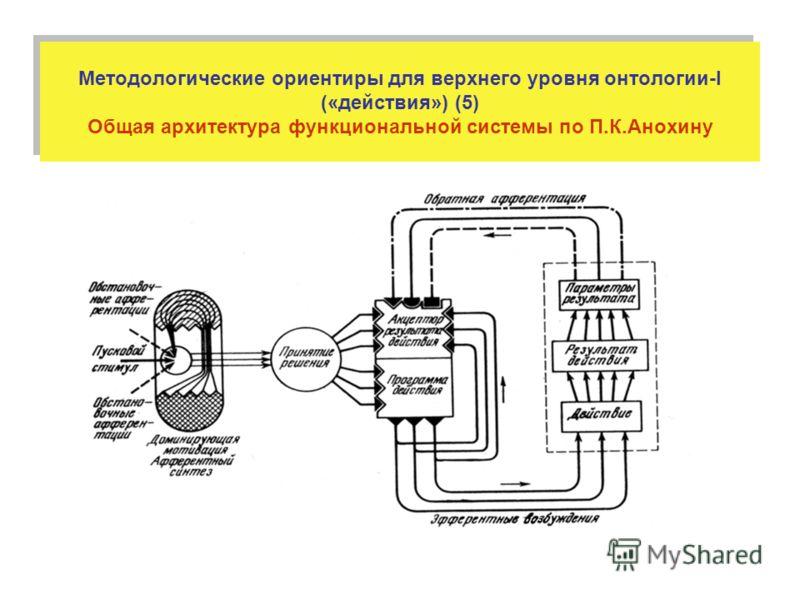 Методологические ориентиры для верхнего уровня онтологии-I («действия») (5) Общая архитектура функциональной системы по П.К.Анохину