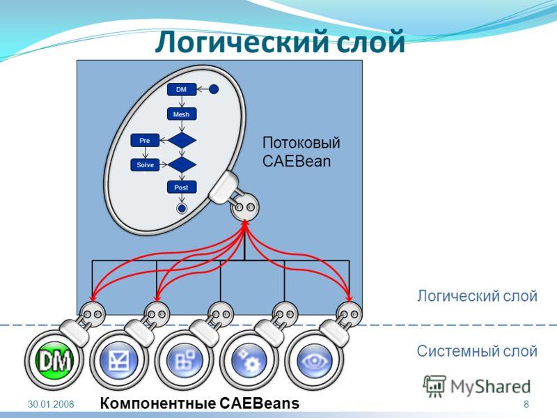 Логический слой Компонентные CAEBeans Потоковый CAEBean Mesh DM Pre Solve r Post Логический слой Системный слой 30.01.20088