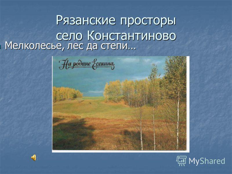 Рязанские просторы село Константиново Мелколесье, лес да степи… Мелколесье, лес да степи…