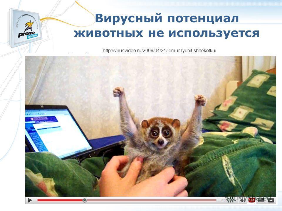 Вирусный потенциал животных не используется http://virusvideo.ru/2009/04/21/lemur-lyubit-shhekotku/