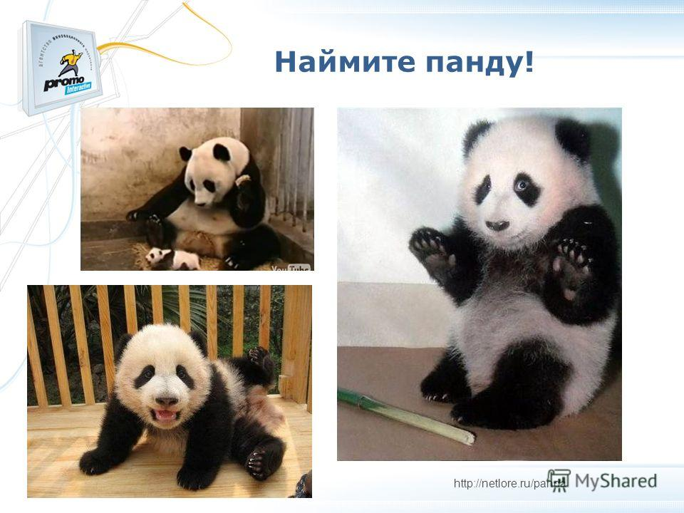 Наймите панду! http://netlore.ru/panda