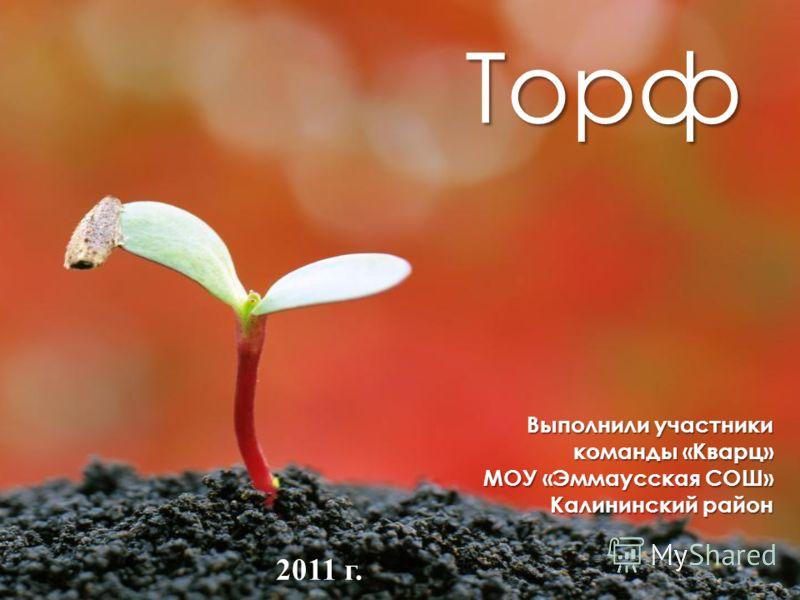 Выполнили участники команды «Кварц» МОУ «Эммаусская СОШ» Калининский район Торф 2011 г.