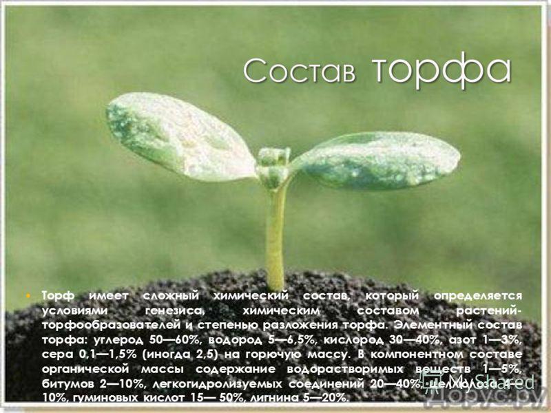 Торф имеет сложный химический состав, который определяется условиями генезиса, химическим составом растений- торфообразователей и степенью разложения торфа. Элементный состав торфа: углерод 5060%, водород 56,5%, кислород 3040%, азот 13%, сера 0,11,5%