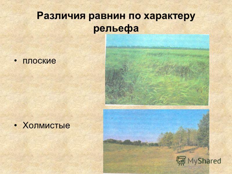 Различия равнин по характеру рельефа плоские Холмистые