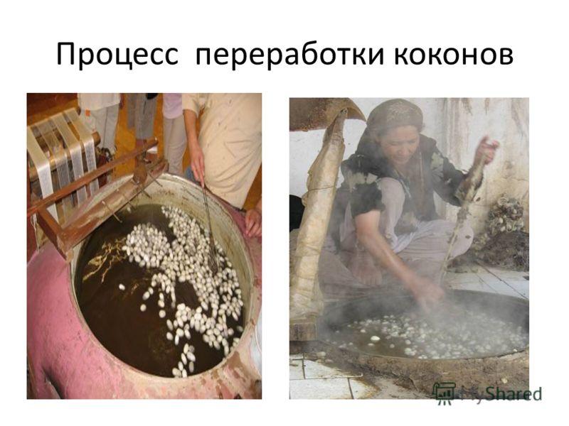 Процесс переработки коконов