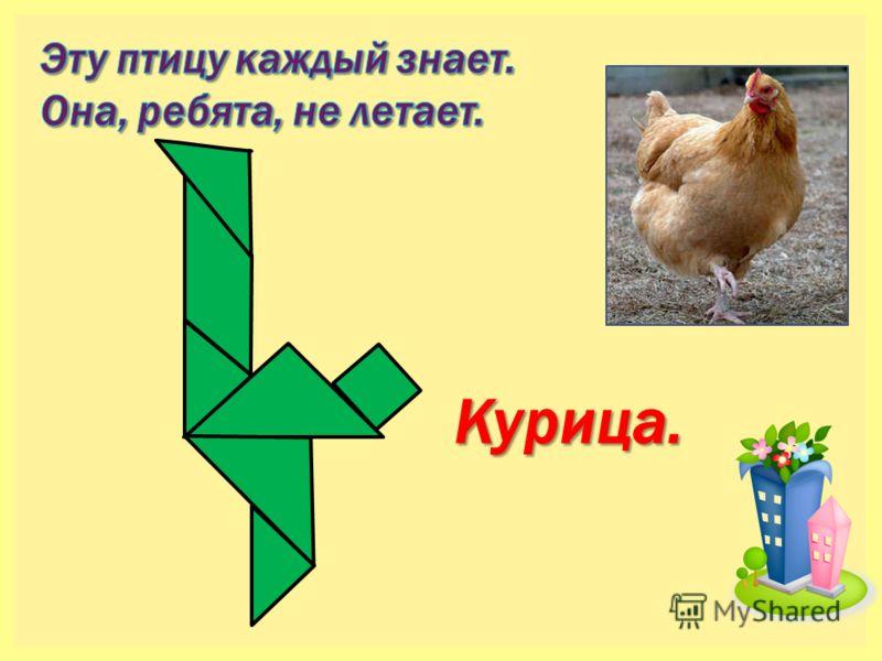 Курица.