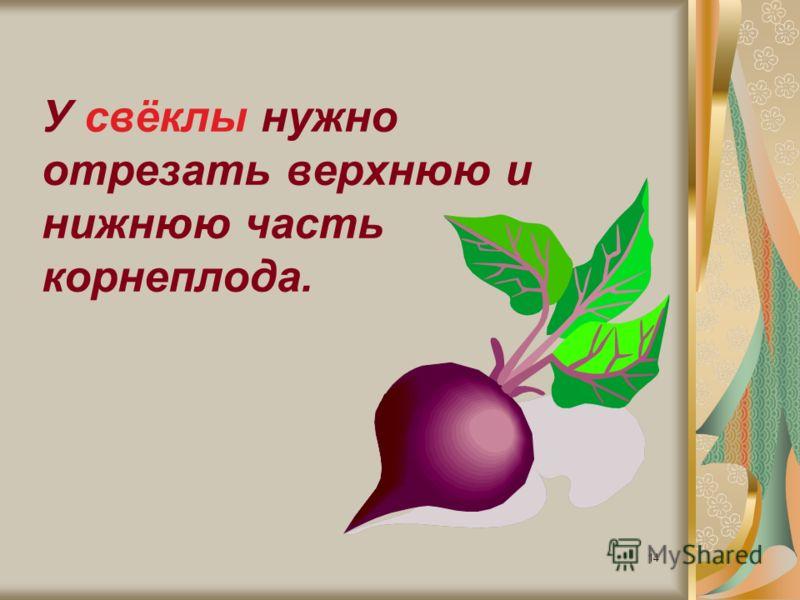 14 У свёклы нужно отрезать верхнюю и нижнюю часть корнеплода.