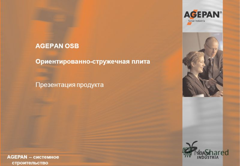 16.12.2004Sonae-Akademie AGEPAN OSB Susanne Renz 1 AGEPAN OSB Ориентированно-стружечная плита Презентация продукта AGEPAN – системное строительство