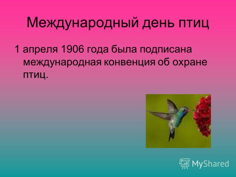 Международный день птиц 1 апреля 1906 года была подписана международная конвенция об охране птиц.