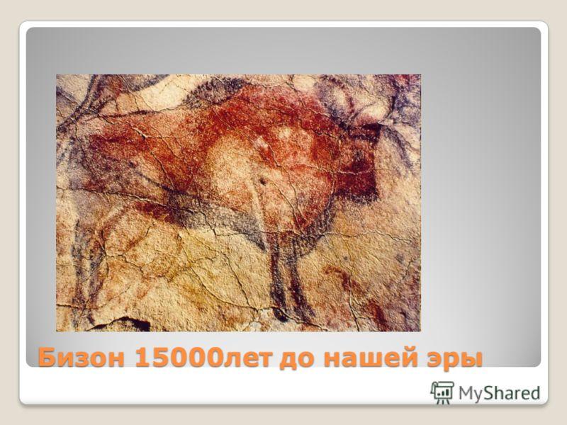 Бизон 15000лет до нашей эры