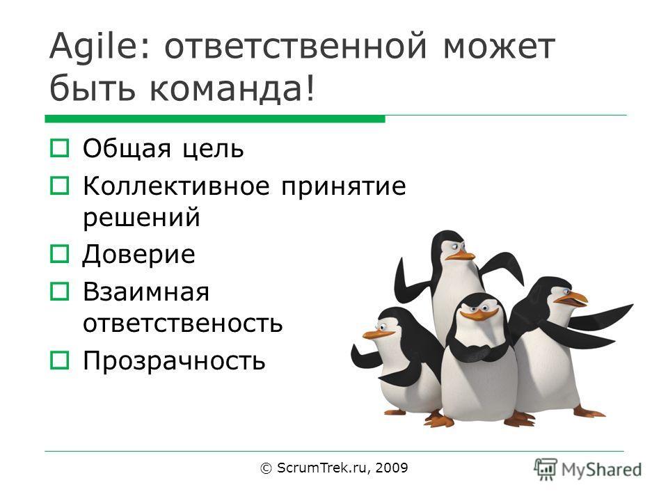 Agile: ответственной может быть команда! Общая цель Коллективное принятие решений Доверие Взаимная ответственность Прозрачность © ScrumTrek.ru, 2009