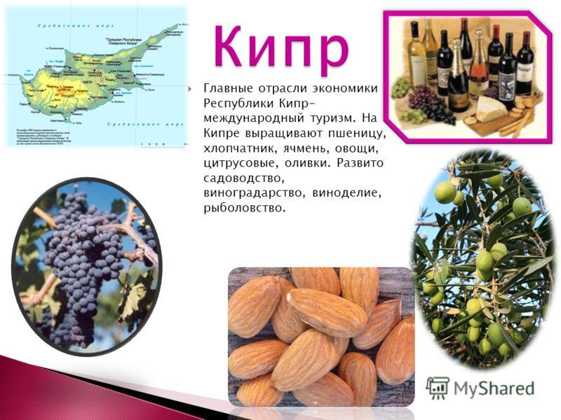 Главные отрасли экономики Республики Кипр- международный туризм. На Кипре выращивают пшеницу, хлопчатник, ячмень, овощи, цитрусовые, оливки. Развито садоводство, виноградарство, виноделие, рыболовство.