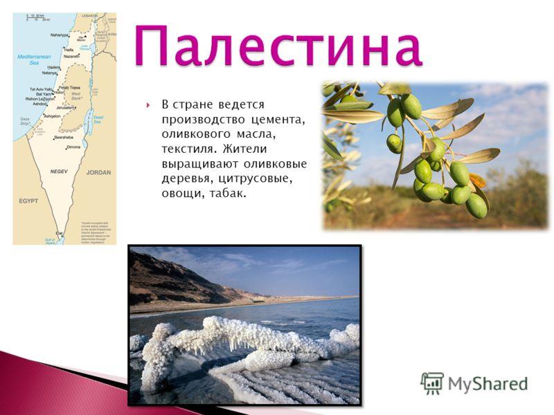 В стране ведется производство цемента, оливкового масла, текстиля. Жители выращивают оливковые деревья, цитрусовые, овощи, табак.