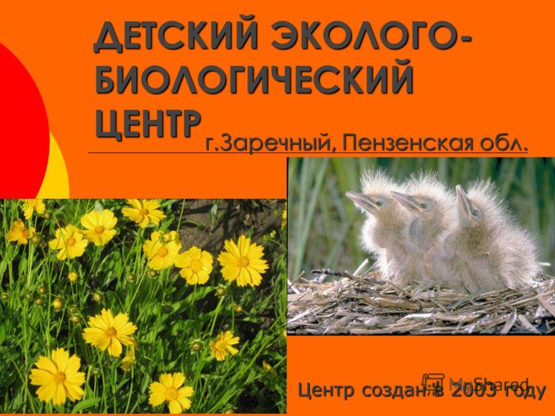 ДЕТСКИЙ ЭКОЛОГО- БИОЛОГИЧЕСКИЙ ЦЕНТР г.Заречный, Пензенская обл. Центр создан в 2003 году