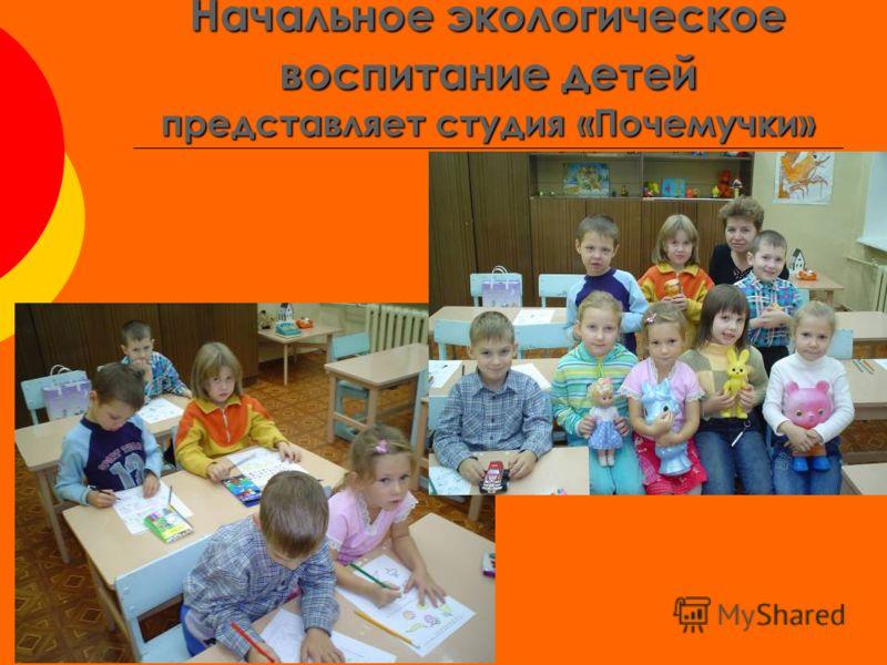 Начальное экологическое воспитание детей представляет студия «Почемучки»