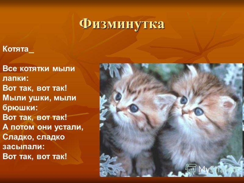 Физминутка Котята Все котятки мыли лапки: Вот так, вот так! Мыли ушки, мыли брюшки: Вот так, вот так! А потом они устали, Сладко, сладко засыпали: Вот так, вот так!