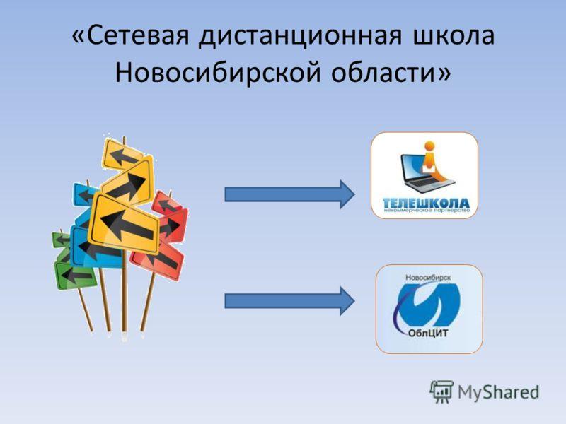 «Сетевая дистанционная школа Новосибирской области»