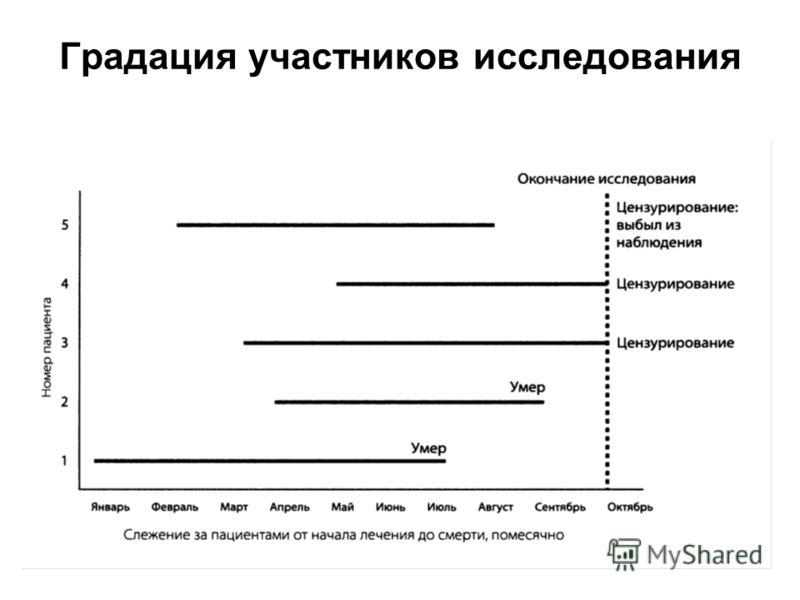 49 Градация участников исследования