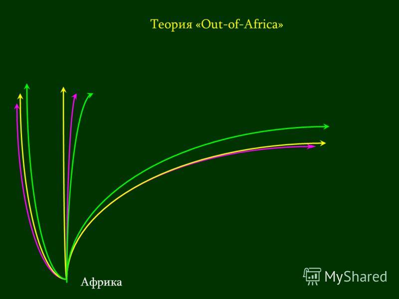 Теория «Out-of-Africa» Африка