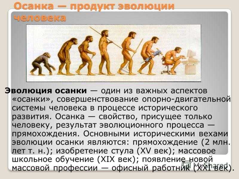 Осанка продукт эволюции человека Эволюция осанки один из важных аспектов «осанки», совершенствование опорно-двигательной системы человека в процессе исторического развития. Осанка свойство, присущее только человеку, результат эволюционного процесса п