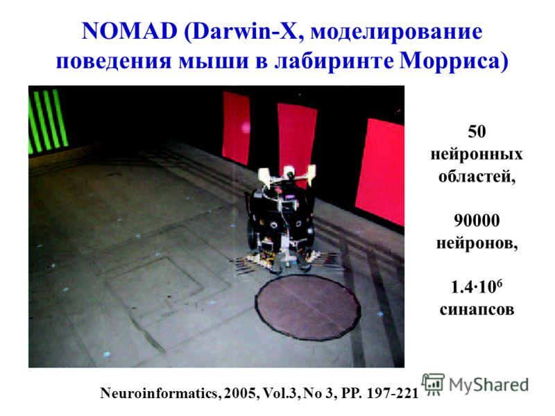 NOMAD (Darwin-X, моделирование поведения мыши в лабиринте Морриса) 50 нейронных областей, 90000 нейронов, 1.4·10 6 синапсов Neuroinformatics, 2005, Vol.3, No 3, PP. 197-221