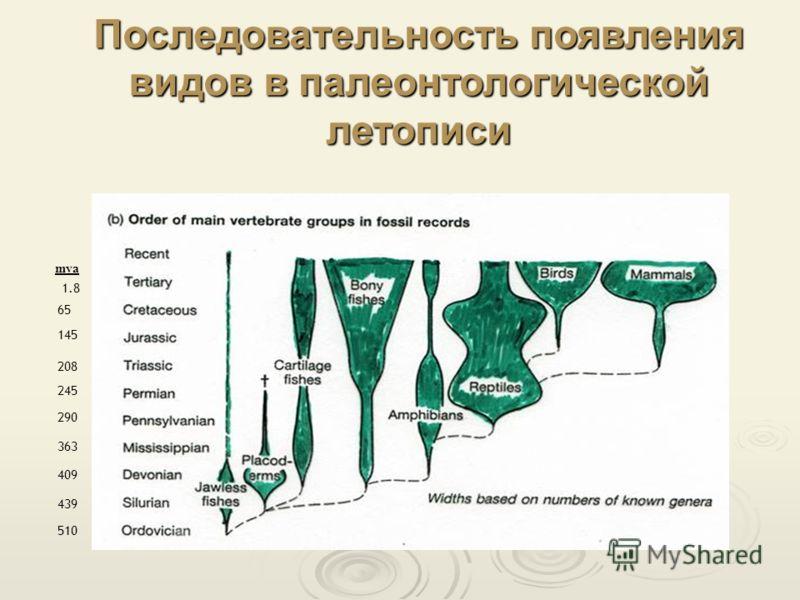 1.8 510 439 409 363 290 245 208 145 65 mya Последовательность появления видов в палеонтологической летописи