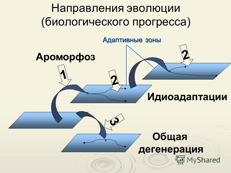 Направления эволюции (биологического прогресса) 1 3 2 Ароморфоз Идиоадаптации Общая дегенерация 2 Адаптивные зоны