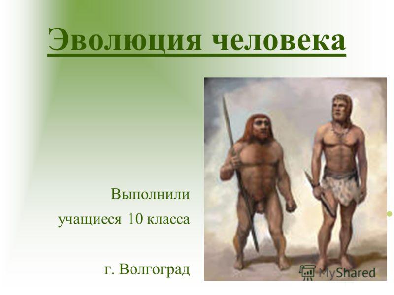 Эволюция человека Выполнили учащиеся 10 класса г. Волгоград